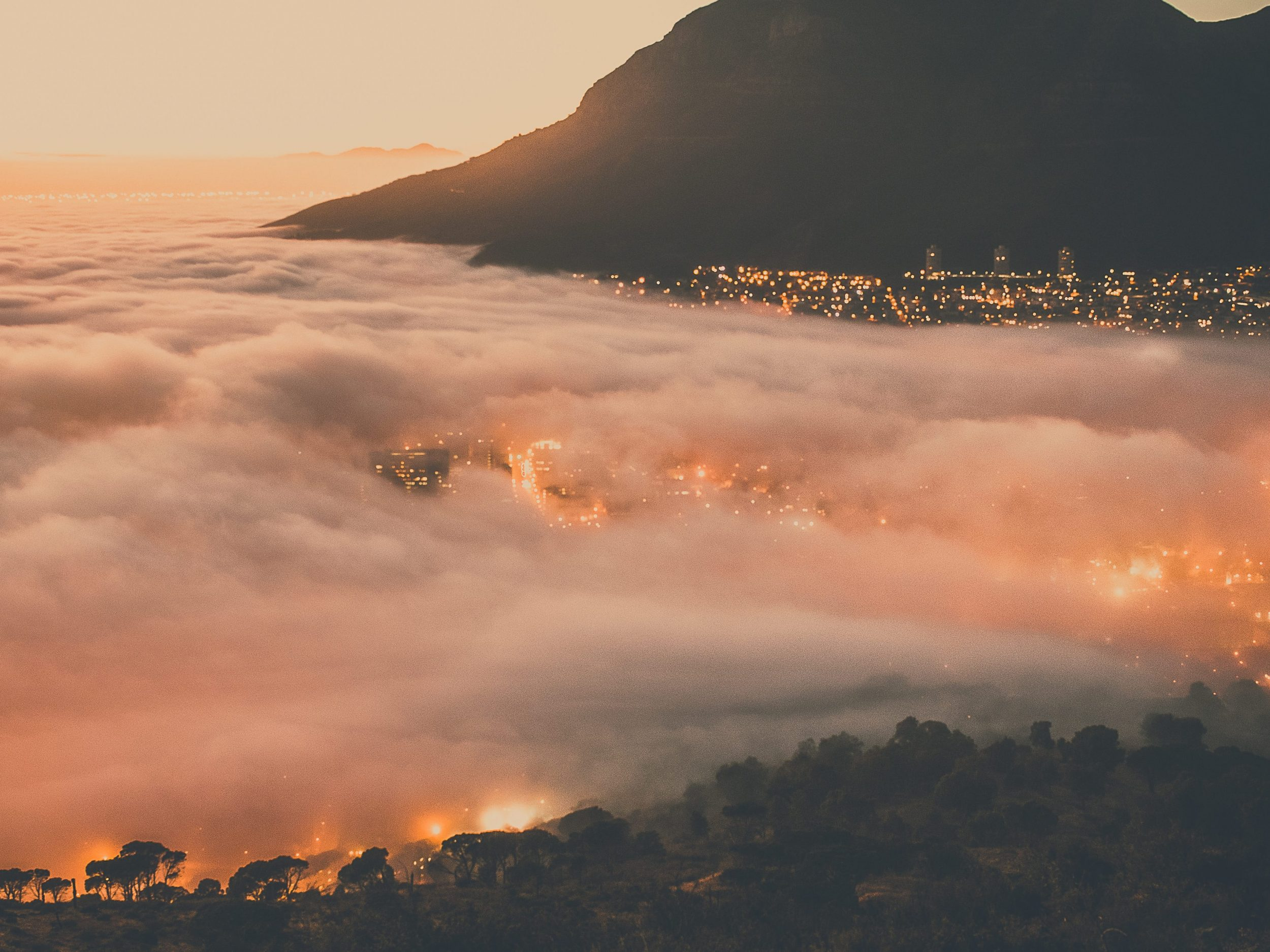 south africa business travel