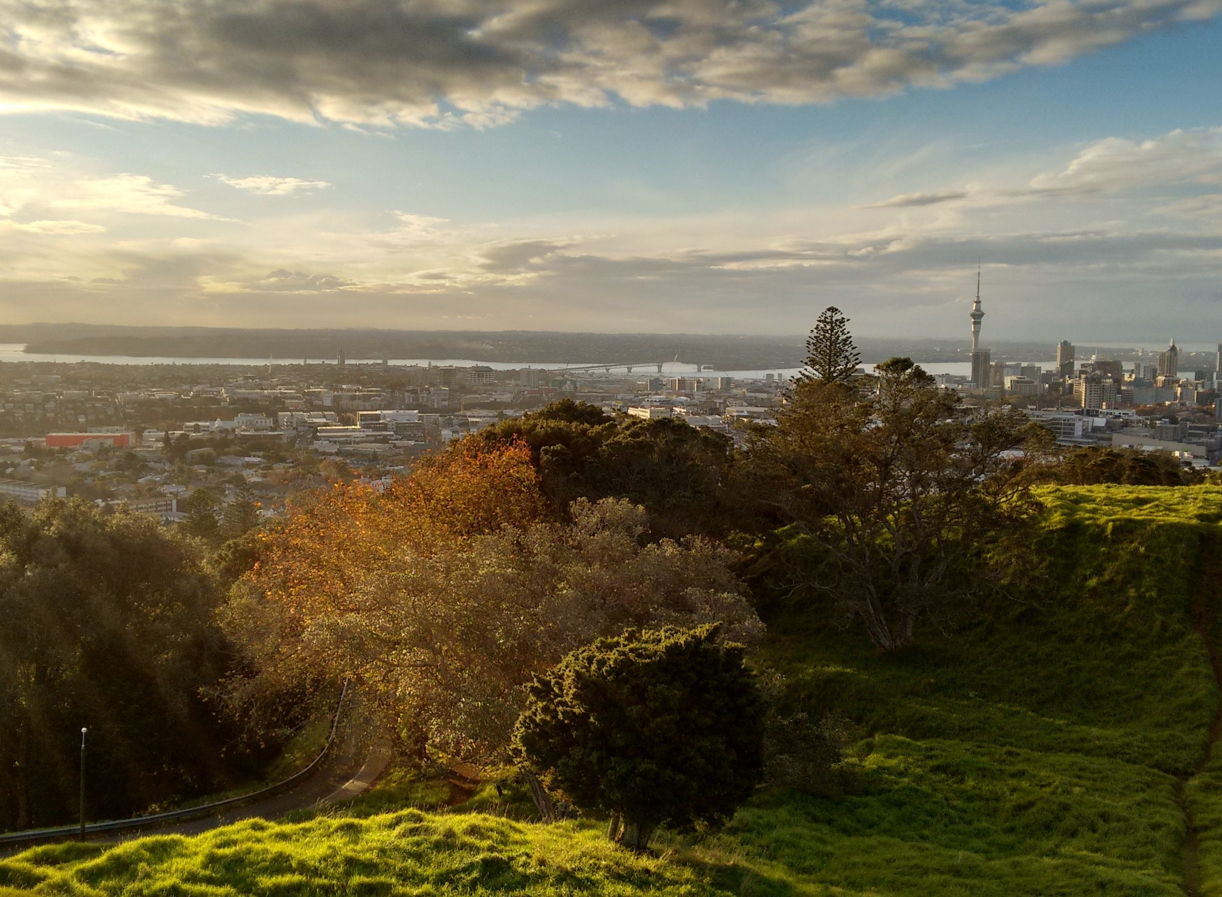 auckland new zealand business travel